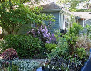 Garden Club Plant Sale tables.April 30 2016