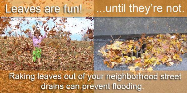 leaves-in-street-drains